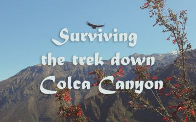 How I survived the Colca Canyon Trek in Arequipa