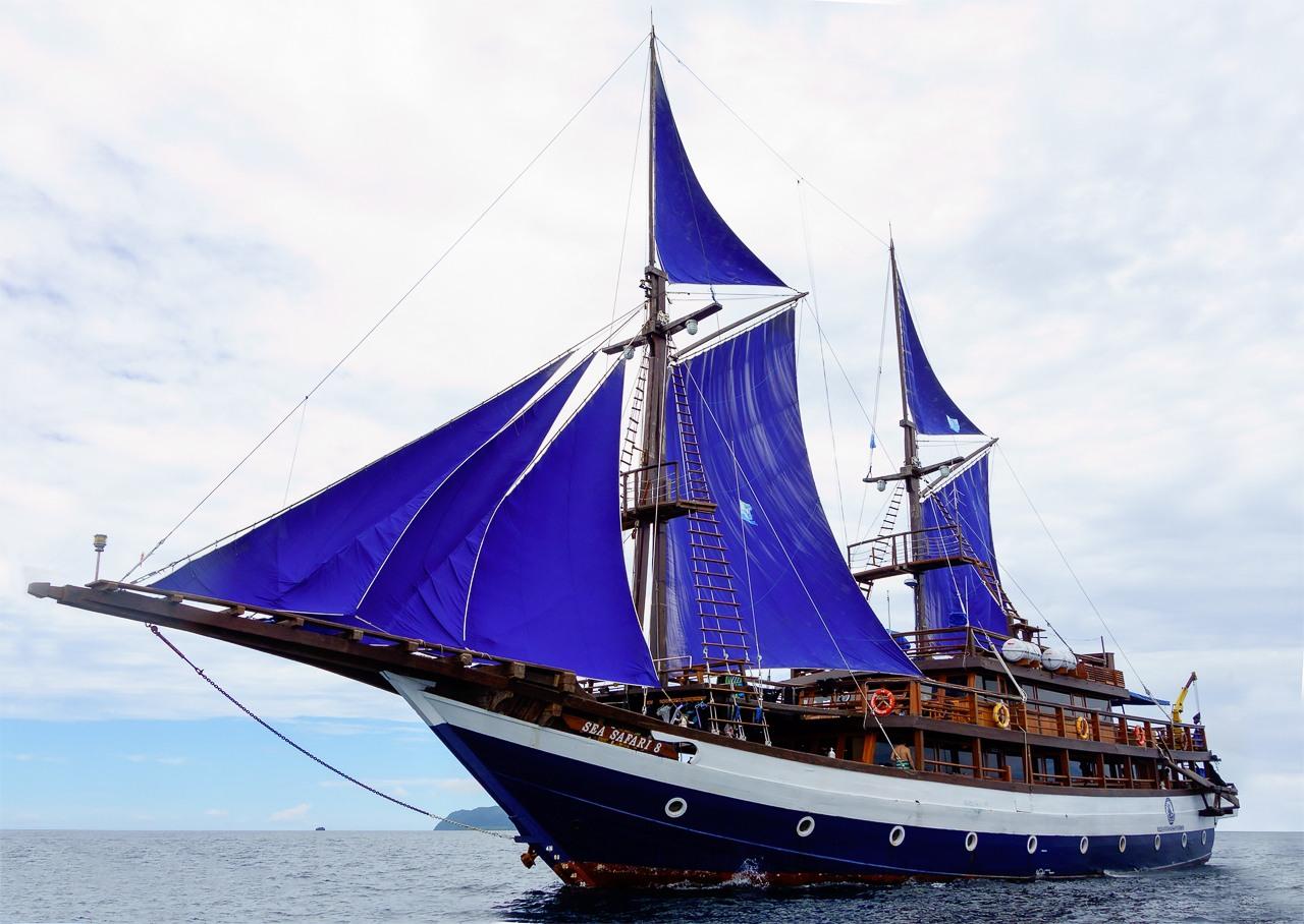 Diving Raja Ampat Sea Safari 8